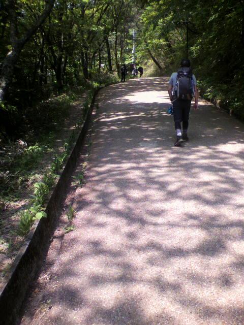 今日は朝から葛城山に登山