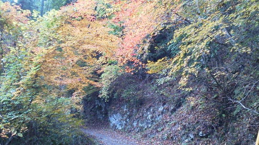 高野山にまた行ってきました!女人堂へ