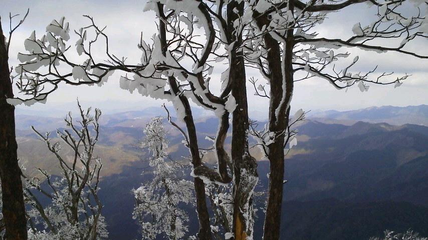 高見山樹氷見てきました!