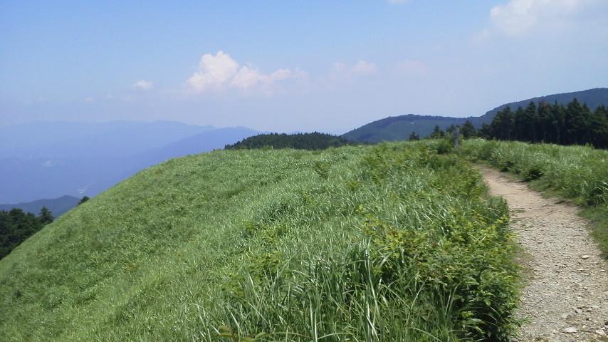 きみとうげから岩湧山山登、長いコースに、、、