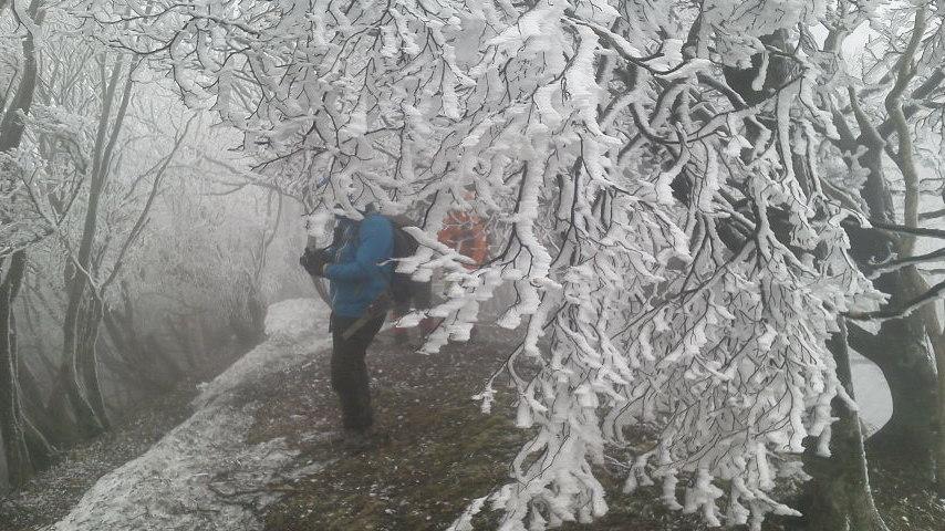 高見山樹氷にブリザード